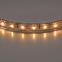Лента белого свечения Lightstar 402002