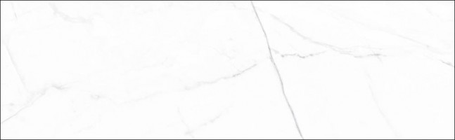 Плитка Aparici Vivid White Calacatta 29.75x99.55 настенная ACV000002