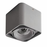 Светильник Lightstar Monocco точечный накладной декоративный серый 212519