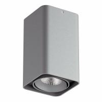 Светильник Lightstar Monocco точечный накладной декоративный со встроенными светодиодами серый 052139