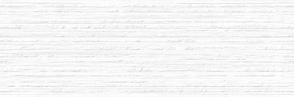 Плитка Omnia Spirit Decor Blanco 25x75 настенная