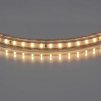 Лента белого свечения Lightstar 402032