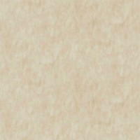 Обои Zambaiti Nova 21038 10.05x1.06 виниловые