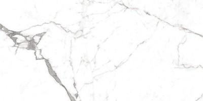 Керамогранит Ocean Ceramic Superb Satuario Grande 60x120