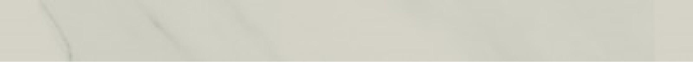 Бордюр Atlas Concorde Russia Allure Gioia Listello 7.2x80 610090002173