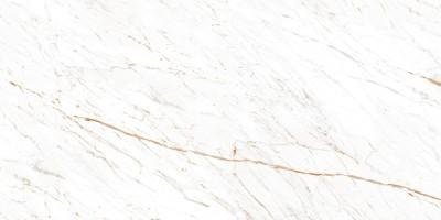 Керамогранит Ocean Ceramic Nero White 60x120
