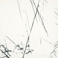 Керамогранит Bien Seramik Agata White Rec Full Lap 60x60
