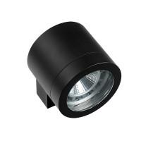 Светильник уличный настенный Lightstar Paro 350617