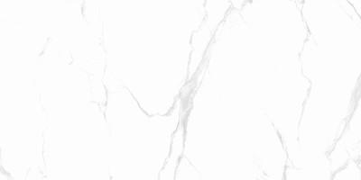 Керамогранит Anka Seramik Carrara Classic Gold Polished 60x60