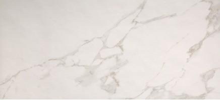 Плитка Fap Ceramiche Roma 110 Calacatta 50x110 настенная fLY3