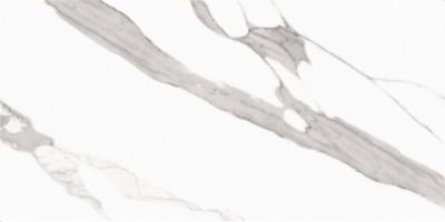 Керамогранит CV20163 Splendida Statuario Glossy 60x120 Colori Viva