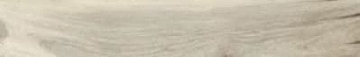 Керамогранит 75076 Kauri Catlins Lapp. Rett. 20x120 La Fabbrica