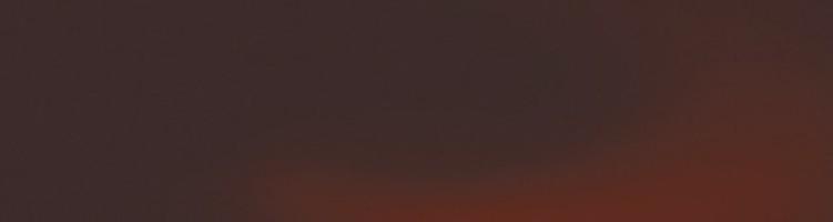 Керамогранит настенный Cloud Brown Ele гладкая 24.5х6.58 Paradyz