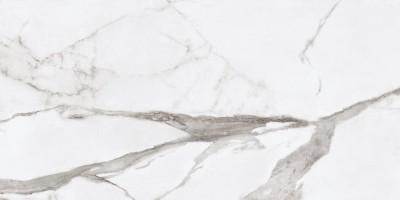 Керамогранит Ariana Epoque White Statuario Lap 60x120 PF60004974