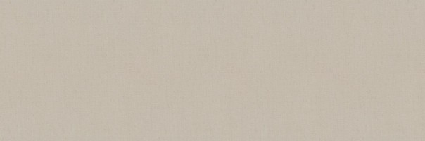 Керамогранит Cicogres Aurea Vison Ret 120x40
