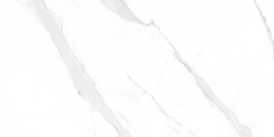 Керамогранит STATUARY BLANCO 75x75 Geotiles