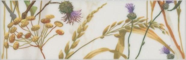 Бордюр Астория Птицы белый обрезной SST/A04/12105R 25x8 Kerama Marazzi