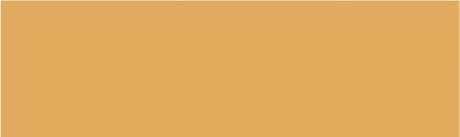 Настенная плитка 2821 Баттерфляй оранжевая 8.5x28.5 Kerama Marazzi