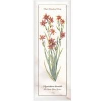 Декор NT/A88/15005 Ноттингем цветы грань 15x40 Kerama Marazzi