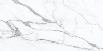 Керамогранит Ocean Ceramic Turkish White 60x120