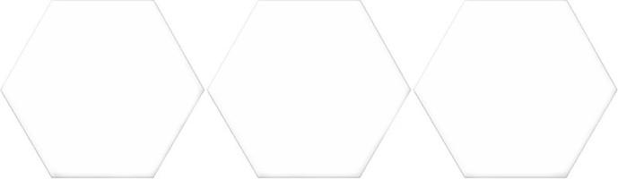 Керамогранит Oset Versalles HEX White 20x24