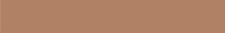 Карандаш TopCer Вставки Strip Color № 04 - Caramel 2.1x13.7 5STP04/1C