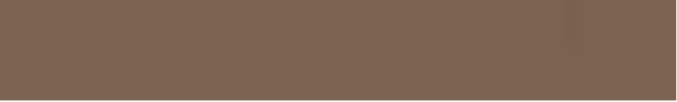 Карандаш TopCer Вставки Strip Color № 29 - Coffee Brown 2.1x13.7 5STP29/1C