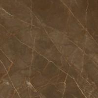 Керамогранит 262503 Emote Pulpis Marrone Rett. 78 78x78 Versace