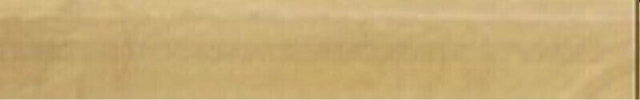 Бордюр Versace Venere Torello Oro 4x25 68132