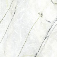 Керамогранит C221101941 Calacatta Green Polished Premium 120x120 Xlight