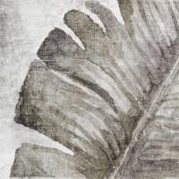 Керамогранит Amazonia Tropic Grey 13.8x13.8 ZYX